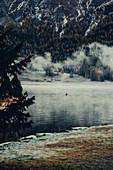 Ruderboot am Silvaplanersee bei Nebel im Sonnenaufgang, im Oberengadin, Sankt Moritz im Engadin, Schweiz