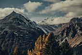 Herbstliche Berglanschaft im Oberengadin, Engadin, Schweiz, Europa
