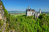 Schloss Neuschwanstein, Schwangau, Allgäu, Schwaben, Bayern, Deutschland