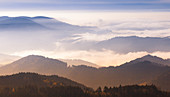 Blick vom Schliffkopf in den Nordschwarzwald bei Sonnenaufgang, Schwarzwald, Baden Württemberg, Deutschland