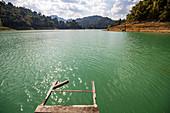 Sicht von Steg auf Wasser des Ratchaprapha See im Khao Sok Nationalpark, Khao Sok, Thailand