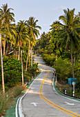 Palm-lined road towards Than Sadet National Park, Koh Phangan. Thailand