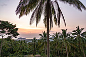 Sunset with a view over palm trees in the south of Koh Phangan. Thailand