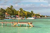 Blick auf Ufer der Lagune der 7 Farben in Bacalar, Quintana Roo, Yucatan Halbinsel, Mexiko