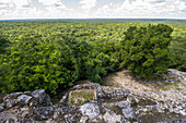 Jungle view from Calakmul temple grounds, Yucatan Peninsula, Mexico