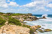 """Coast in the south of the island """"Isla Mujeres"""", Quintana Roo, Yucatan Peninsula, Mexico"""