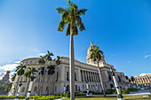 View of palm trees and capitol, old town Havana, Cuba
