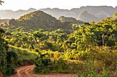 "View of the Vinales valley (""Valle de Vinales"") in the evening light, Pinar del Rio province, Cuba"