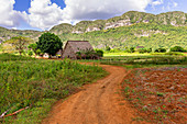 "Landscape and rural life on hiking trail in the Vinales valley (""Valle de Vinales""), Pinar del Rio province, Cuba"