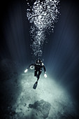 High angle underwater view of diver wearing wet suit and flippers, air bubbles rising.