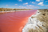 Pink watercourse at desalination plant in Walvis Bay / Walvis Bay, Namibia