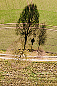 Aerial view of a dirt road with Jesus cross and trees in spring. Upper Bavaria, Bavaria, Germany, Europe