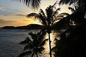 Sunset with a view of palm trees and Pacific Ocean, Fiji
