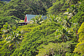 Dream villa in the hills, surrounded by lush vegetation, Savusavu, Fiji ISlands