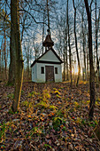 Chapel at the picture oak, Iphofen, Kitzingen, Lower Franconia, Franconia, Bavaria, Germany, Europe