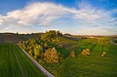Blick auf die Weinlage Vogelsang bei Markt Einersheim, Possenheim, Kitzingen, Unterfranken, Franken, Bayern, Deutschland, Europa