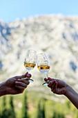 France, Bouches du Rhone, Aix region, Puyloubier, Domaine de Saint Ser, AOC Cote de Provence Sainte Victoire, tasting