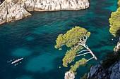 France, Bouches-du-Rhône, National park of Calanques, Marseille, 9th district, creek of En-Vau