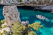 France, Bouches-du-Rhône, National park of Calanques, Marseille, 9th district, creek of En-Vau, tourist boat