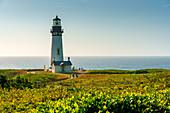 Yaquina Head Lighthouse, Newport, Lincoln County, Oregon, Usa