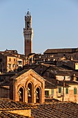 Italy, Tuscany, Sienna, historical centre listed as World Heritage by UNESCO