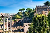 Italy, Latium, Rome, historical centre listed as World Heritage by UNESCO, Roman Forum, with temple of Castor and Pollux, Palatine Hill on the right