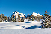 Winter landscape in the Seiser Alm ski area, South Tyrol, Italy