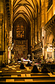 Interior shot of the Wroclaw Cathedral, St. John the Baptist Cathedral, Cathedral Island, Ostrów Tumski, Wroclaw, Poland, Europe