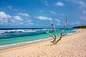 Deserted beach on Tanna, Vanuatu, South Pacific, Oceania