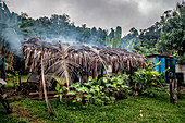 Cooking hut with smoke, Efate, Vanuatu, South Pacific, Oceania