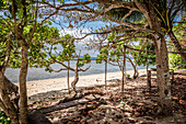 Deserted beach on Efate, Vanuatu, South Pacific, Oceania