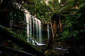 Russell Falls at Mt. Field National Park, Tasmania