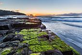 Sunrise at Tessalated Pavement at Eagle Hawk Neck, Tasmania