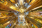 Ceiling and sauelen in the interior of the Sagrada Famlia by Antoni Gaudi, Barcelona, Spain