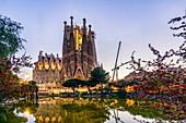 Sagrada Famlia by Antoni Gaudi, illuminated at night, Barcelona, Spain