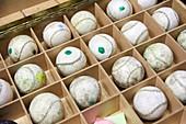 Balls, Jai Alai, Zesta-Punta (Basket tip), Fronton Atano, Donostia, San Sebastian, Gipuzkoa, Basque Country, Spain, Europe