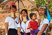 "Kayan Lahwi women at the Kay Htein Bo village celebration. The Long Neck Kayan (also called Padaung in Burmese) are a sub-group of the Karen ethnic from Burma. They wear spiral coils around their neck and lower legs.They are also nicknamed ""giraffe women"". The neck itself is not lengthened; the appearance of a stretched neck is created under the pressure of the collar, the ribs lower and the shoulders and clavicles collapse.The traditionnal Kay Htein Bo celebration is held once a year in April in most every Kayan village. It's an opportunity for Kayan people from all different places and even"