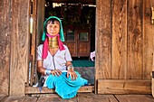 "Kayan Lahwi woman with brass neck coils and traditional clothing sitting next to the front door of her home. In the background stands a buddhist altar. The Long Neck Kayan (also called Padaung in Burmese) are a sub-group of the Karen ethnic from Burma. They are both animists and boudhists. Women wear spiral coils around their neck and lower legs.They are also nicknamed ""giraffe women"". The neck itself is not lengthened; the appearance of a stretched neck is created under the pressure of the collar, the ribs lower and the shoulders and clavicles collapse. Pan Pet Region, Kayah State, Myanmar."