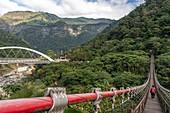 Fumei Suspension bridge in Danayigu Ecological Park, Alishan, Taiwan