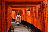 Japanese Priest walking up hill in Kyoto most famous shrine, Fushimi Inari shrine, Honshu,Japan,Asia.