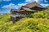Kyoto Japan. Kiyomizu dera shrine