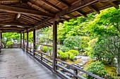 Kyoto Japan. Kennin ji buddhist zen temple