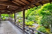 Kyoto, Japan, Kennin-ji buddhistischer Zen-Tempel