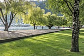 QUEENSTOWN, NEW ZEALAND - November 19 2019: cityscape with trees at waterfront of touristic town, shot in bright spring light on november 19 2019 at Queenstown, Otago, South Island, New Zealand\n