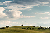 Fields near Sachsenhausen in the evening light, Waldeck, Waldeck-Frankenberg, Hesse, Germany, Europe