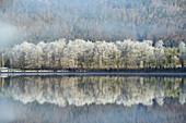 Morning mood at Offensee near Ebensee, Upper Austria, Austria.