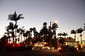 Palm trees and traffic at night on East Cabrillo Boulevard in Santa Barbara, California, USA.