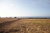 Kind läuft einen Weg auf einer Wiese entlang oberhalb des Strandes von Big Sur, Kalifornien, USA.