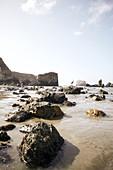 Felsen am Strand von Big Sur, Kalifornien, USA.