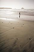 Kleines Kind im Abendlicht am Strand von Big Sur, Kalifornien, USA.